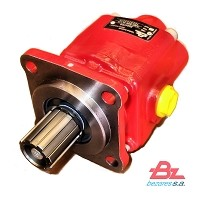 Gear Pumps with CAST IRON body